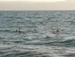 Swimming in the Dead Sea was so much fun!!