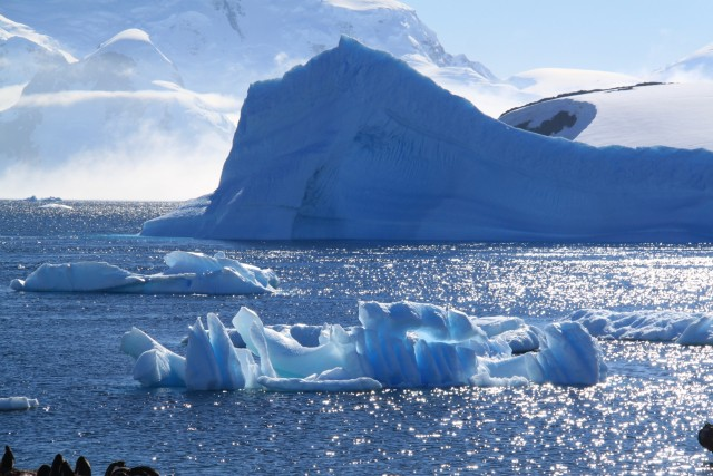 The sparkling blues of the water and the icebergs were mesmerizing!
