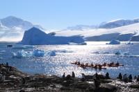 Highlight for album: Antarctic Peninsula
