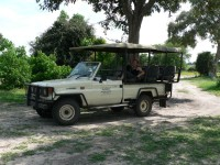 Highlight for album: Southern Africa Adventure - Botswana