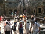 """This part of the Ta Prohm temple was used in the filming of Tomb Raider and is now a constant mob site.  :-)  I'd rather take a picture of the craziness than elbow in to get my own """"perfect"""" picture."""