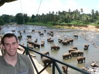Highlight for album: Sri Lankan Elephant Hunt