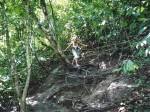 The next day we took a hike through the rain forest...