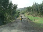 This is the long lane that takes us from the main road to the monastery of Debre Libanos, founded in the 13th century.