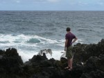 The road winds between lush rain forest and beautiful beaches. We stopped here to play on the rocks.