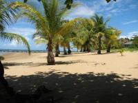 Highlight for album: Roatan Island, Honduras