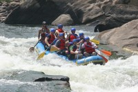 Highlight for album: Whitewater Rafting on the New River, WV